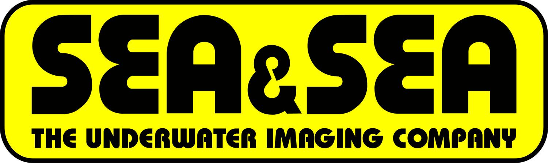 S&S Yellow Logo New.jpg