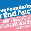 Sea Save, Aukcja chrytatywna, Safe the Oceans, Sea Save Fundation, Nurki, Magazyn Nurki, Podwodny Świat, Nurkowanie, Scuba diving