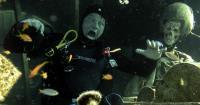 Magazyn Nurki 11 Akaba, C-130 Hercules, Jordania Nurkowanie, Podwodna przygoda, Rodzinne nurkowanie, dzieci nurkują, pod wodą